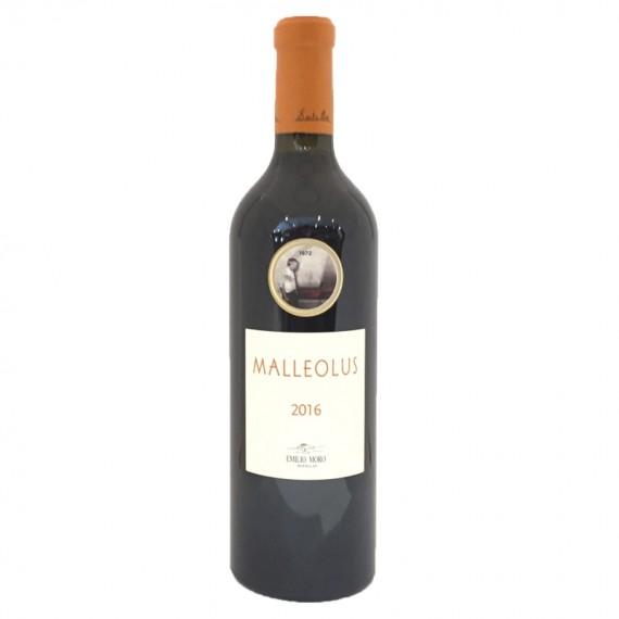 Malleolus Tinto